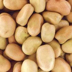 uk beans